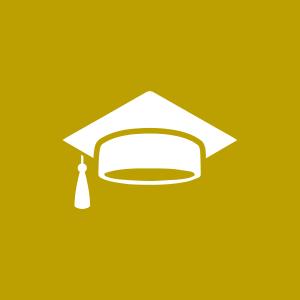 מערך לימודי, טיפולי ומקצועי מותאם אישית